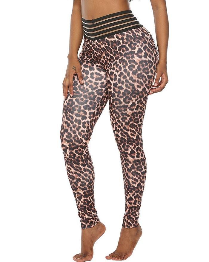 Gauze Gym Active  Printed Legging - As the picture XXL